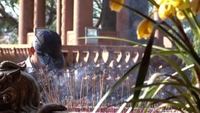 Hombre e incienso que queman en un templo budista almacen de video