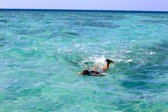 Hombre el las vacaciones que bucean en el mar Imagen de archivo