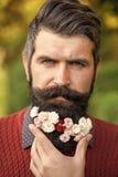 Hombre elegante con las flores en su barba Hombre con las flores en barba Imagen de archivo libre de regalías