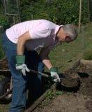 Hombre enérgio que cava el suelo Imagen de archivo libre de regalías