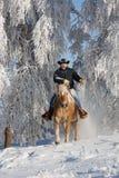 Hombre en caballo Fotografía de archivo