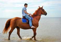 Hombre en caballo Fotos de archivo