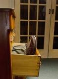 Hombre en cajón Imagen de archivo libre de regalías