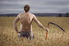 Hombre en campo con la guadaña fotografía de archivo