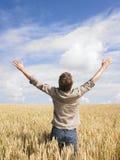 Hombre en campo de trigo Foto de archivo