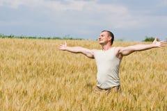 Hombre en campo de trigo Foto de archivo libre de regalías