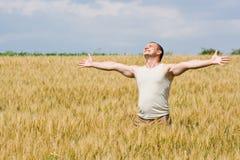 Hombre en campo de trigo Fotografía de archivo
