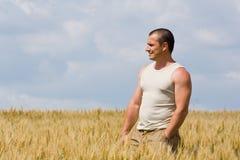 Hombre en campo de trigo Imagenes de archivo