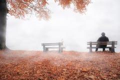 Hombre en el banco cubierto por la niebla en la decoración del otoño Foto de archivo libre de regalías