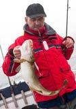 Hombre en el barco con los pescados de bacalao imagenes de archivo