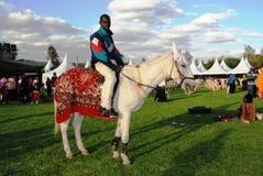 Hombre en el caballo blanco Foto de archivo