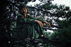 Hombre en el equipo militar que se sienta en una rama de un árbol con una estrella roja grande en su sombrero fotos de archivo libres de regalías