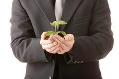 Hombre en el juego que sostiene la planta smal en sus manos foto de archivo libre de regalías