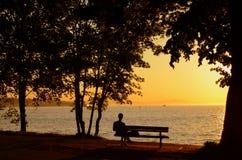 Hombre en el parque de la playa de la puesta del sol fotografía de archivo