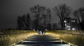 Hombre en el puente Foto de archivo libre de regalías