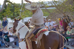 Hombre en la parte posterior del caballo Foto de archivo libre de regalías