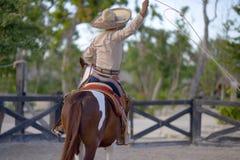 Hombre en la parte posterior del caballo Fotografía de archivo libre de regalías