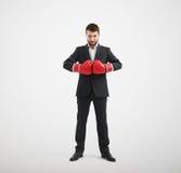 Hombre en los guantes de boxeo rojos que miran la cámara Imagenes de archivo