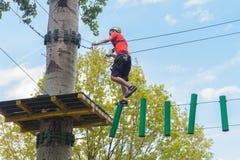 Hombre en parque de la aventura en el top del árbol imagen de archivo libre de regalías