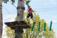 Hombre en parque de la aventura en el top del árbol fotos de archivo libres de regalías
