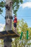 Hombre en parque de la aventura en el top del árbol imagenes de archivo