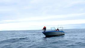 Hombre en pescados de cogida del rey de la Florida del barco almacen de metraje de vídeo