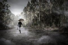 Hombre en técnicas mixtas de niebla del bosque Imagen de archivo libre de regalías