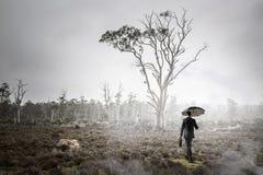 Hombre en técnicas mixtas de niebla del bosque Foto de archivo libre de regalías