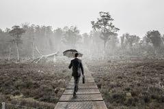 Hombre en técnicas mixtas del bosque del verano Foto de archivo