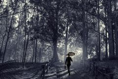 Hombre en técnicas mixtas del bosque del verano Imagen de archivo