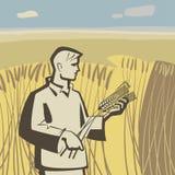 Hombre en trigo stock de ilustración