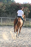 Hombre en un caballo fotos de archivo