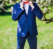 Hombre en una corbata de lazo Imagen de archivo libre de regalías