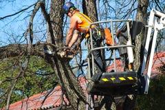 Hombre en una grúa para arriba en un árbol que arregla una rama con una motosierra con los pedazos de madera que vuelan Tulsa Okl fotografía de archivo