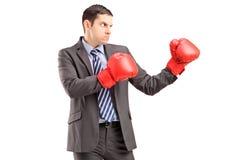 Hombre enojado en traje con los guantes de boxeo rojos listos para luchar Fotos de archivo libres de regalías
