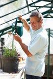 Hombre envejecido centro que trabaja en invernadero Fotos de archivo