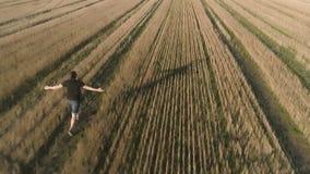 Hombre feliz acertado joven que corre en el campo, brazos extendidos Visión panorámica aérea Visión posterior almacen de metraje de vídeo