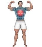 Hombre fuerte con área destacada del pecho ilustración del vector