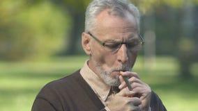 hombre Gris-barbudo que inhala el humo del cigarro que se sienta en parque, disfrutando de gusto y del aroma metrajes