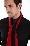 Hombre hermoso en camisa y lazo Fotos de archivo libres de regalías