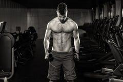 Hombre hermoso que ejercita el bíceps con pesas de gimnasia Imagen de archivo libre de regalías