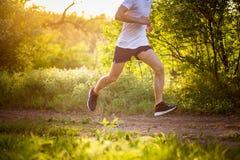 Hombre joven atlético que corre en naturaleza imágenes de archivo libres de regalías