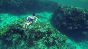 Hombre joven con el equipo de buceo que se zambulle adentro al mar azul profundo almacen de metraje de vídeo
