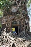 hombre joven, el adolescente en una entrada a destruida cubierto con las raíces del templo Prasat Chrap de los árboles en COM del Imagen de archivo