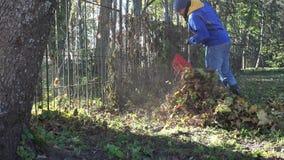 Hombre joven en chaqueta azul que rastrilla las hojas de otoño en jardín en la mañana 4K metrajes