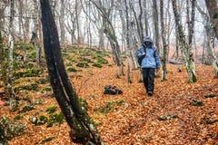 Hombre joven en el bosque del otoño Foto de archivo libre de regalías
