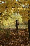 Hombre joven en otoño Imagenes de archivo