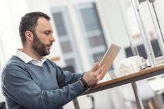 Hombre joven erizado que trabaja en la tableta en oficina Imágenes de archivo libres de regalías