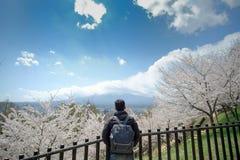 Hombre joven feliz que viaja con Cherry Blossom y el monte Fuji rosados hermosos en el área de templo roja de la pagoda de Churei imagenes de archivo