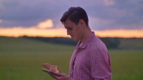 Hombre joven hermoso en camisa rosada que mecanografía en la tableta y la situación en el campo del trigo o del centeno, cielo ro almacen de video